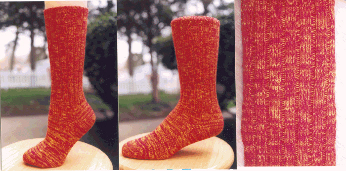 Classic Socks - Tropical Sunrise